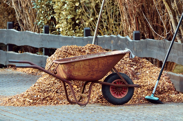 Get Your Garden Ready for Winter Properly