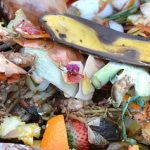 Why You Should Make Your Own Compost